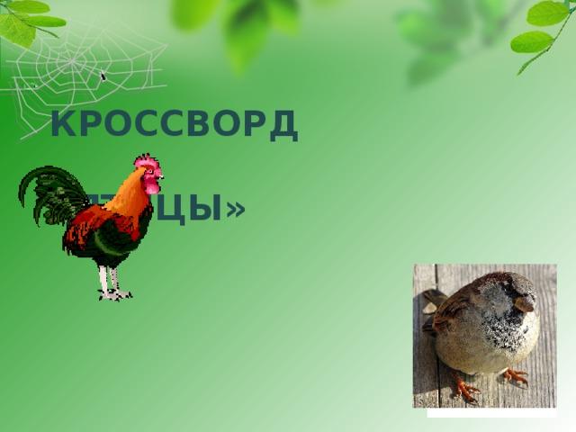 КРОССВОРД   «ПТИЦЫ»