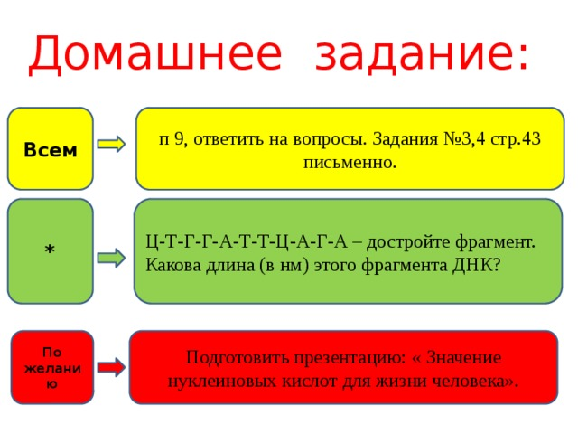 Домашнее задание: п 9, ответить на вопросы. Задания №3,4 стр.43 письменно. Всем * Ц-Т-Г-Г-А-Т-Т-Ц-А-Г-А – достройте фрагмент. Какова длина (в нм) этого фрагмента ДНК? Подготовить презентацию: « Значение нуклеиновых кислот для жизни человека». По желанию