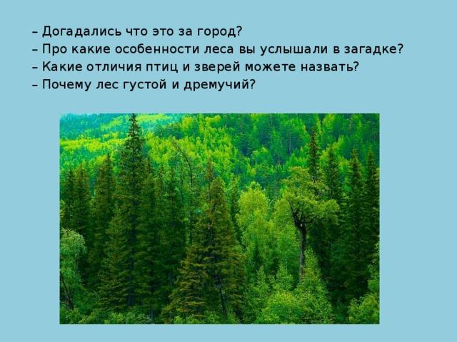 – Догадались что это за город? – Про какие особенности леса вы услышали в загадке? – Какие отличия птиц и зверей можете назвать? – Почему лес густой и дремучий?