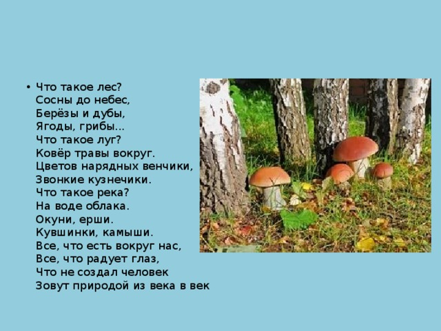 Что такое лес?  Сосны до небес,  Берёзы и дубы,  Ягоды, грибы...  Что такое луг?  Ковёр травы вокруг.  Цветов нарядных венчики,  Звонкие кузнечики.  Что такое река?  На воде облака.  Окуни, ерши.  Кувшинки, камыши.  Все, что есть вокруг нас,  Все, что радует глаз,  Что не создал человек  Зовут природой из века в век