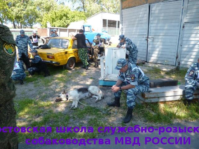 Ростовская школа служебно-розыскного собаководства МВД РОССИИ