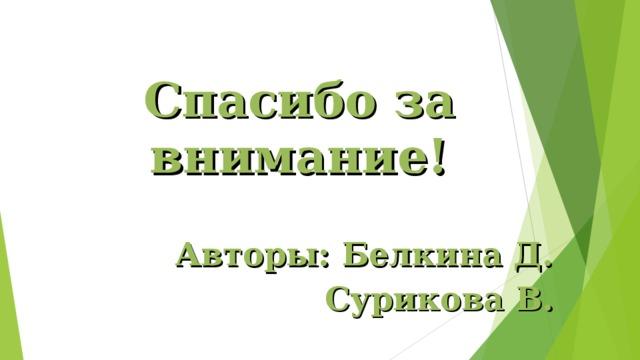 Спасибо за внимание!  Авторы: Белкина Д. Сурикова В.