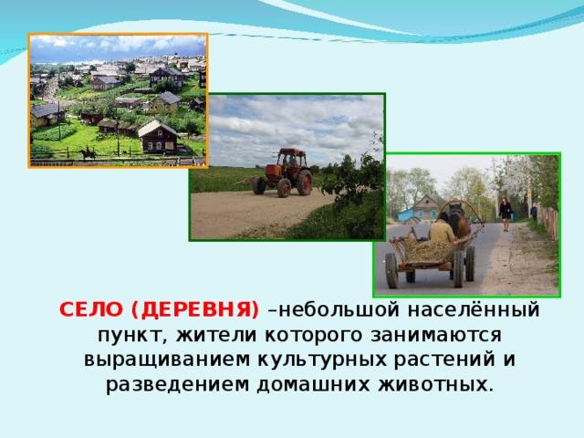 Село  СЕЛО (ДЕРЕВНЯ)  –небольшой населённый пункт, жители которого занимаются выращиванием культурных растений и разведением домашних животных.