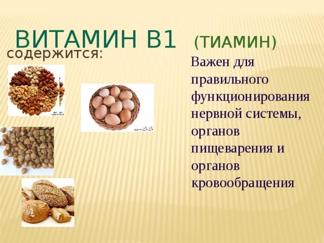 Витамин В1 (тиамин) содержится:  Важен для правильного функционирования нервной системы, органов пищеварения и органов кровообращения