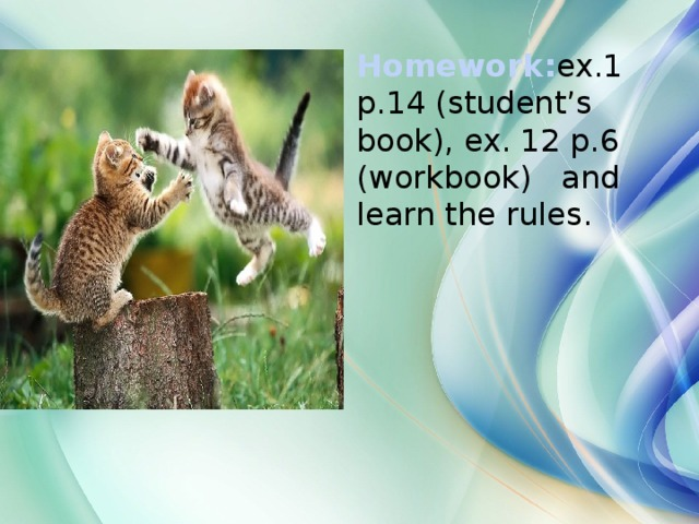 Homework: ex.1 p.14 (student's book), ex. 12 p.6 (workbook) and learn the rules.