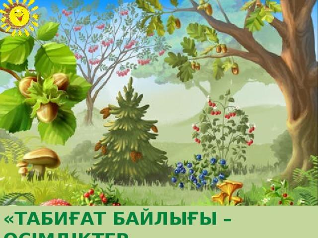 «Табиғат байлығы –өсімдіктер »