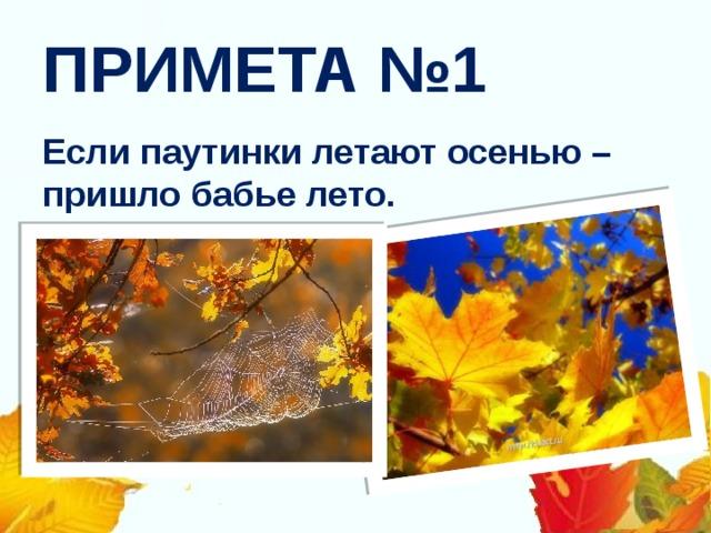 ПРИМЕТА №1 Если паутинки летают осенью – пришло бабье лето.