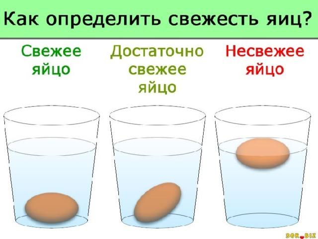 Определение доброкачественности яиц