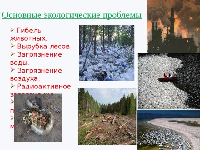 Основные экологические проблемы  Гибель животных.  Вырубка лесов.  Загрязнение воды.  Загрязнение воздуха.  Радиоактивное загрязнение.  Отравление почвы.  Накопление мусора.