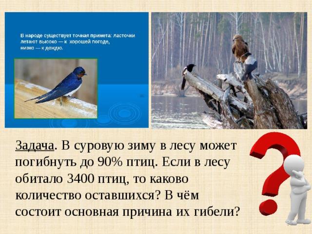 Задача . В суровую зиму в лесу может погибнуть до 90% птиц. Если в лесу обитало 3400 птиц, то каково количество оставшихся? В чём состоит основная причина их гибели?