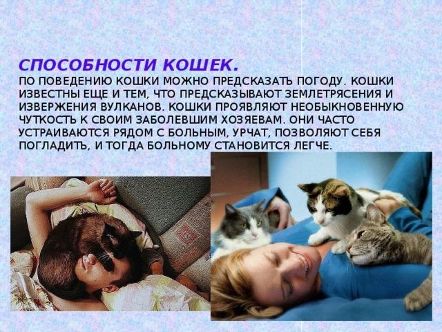 Способности кошек.  По поведению кошки можно предсказать погоду. Кошки известны еще и тем, что предсказывают землетрясения и извержения вулканов. Кошки проявляют необыкновенную чуткость к своим заболевшим хозяевам. Они часто устраиваются рядом с больным, урчат, позволяют себя погладить, и тогда больному становится легче.