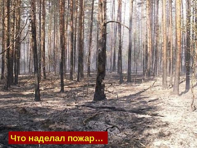 Что наделал пожар…