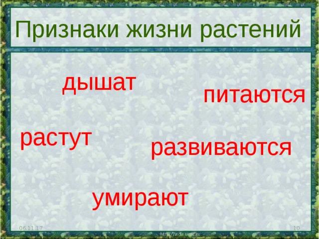 Признаки жизни растений дышат питаются растут развиваются умирают 06.11.17