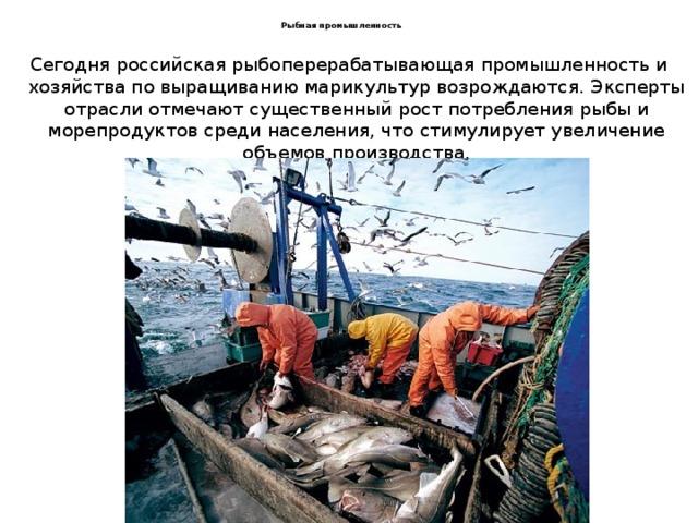 Рыбная промышленность Сегодня российская рыбоперерабатывающая промышленность и хозяйства по выращиванию марикультур возрождаются. Эксперты отрасли отмечают существенный рост потребления рыбы и морепродуктов среди населения, что стимулирует увеличение объемов производства.