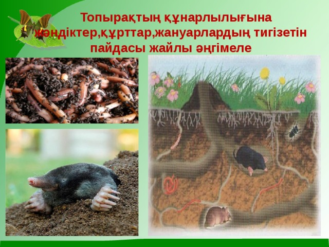 Топырақтың құнарлылығына жәндіктер,құрттар,жануарлардың тигізетін пайдасы жайлы әңгімеле