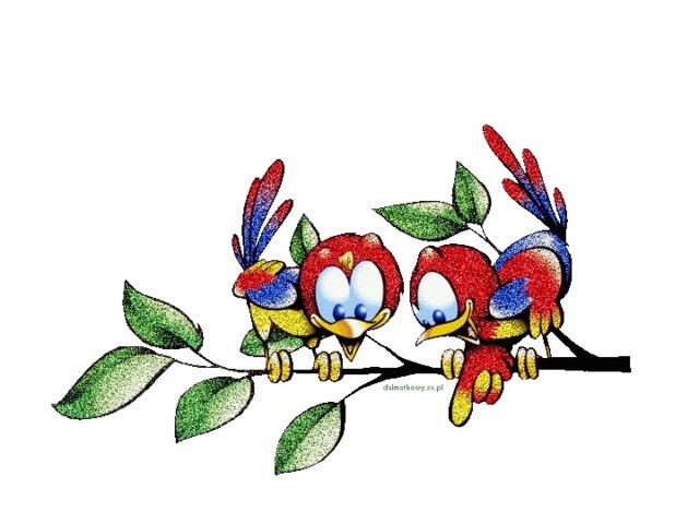 Картинки птиц на которых охотятся один