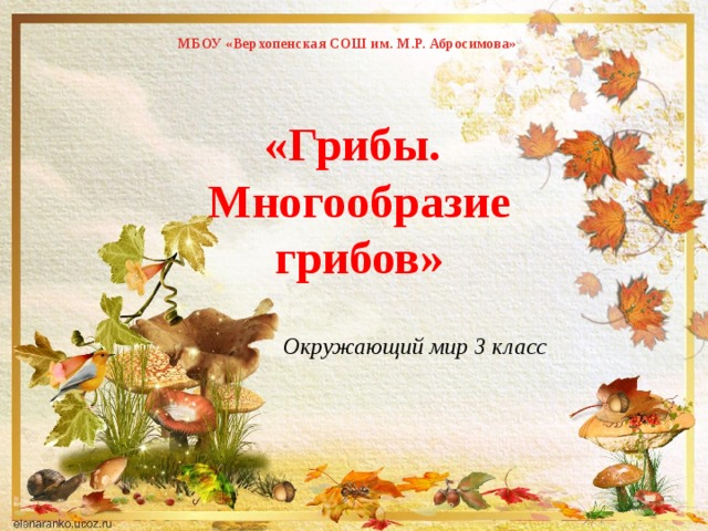 МБОУ «Верхопенская СОШ им. М.Р. Абросимова»   «Грибы. Многообразие грибов» Окружающий мир 3 класс