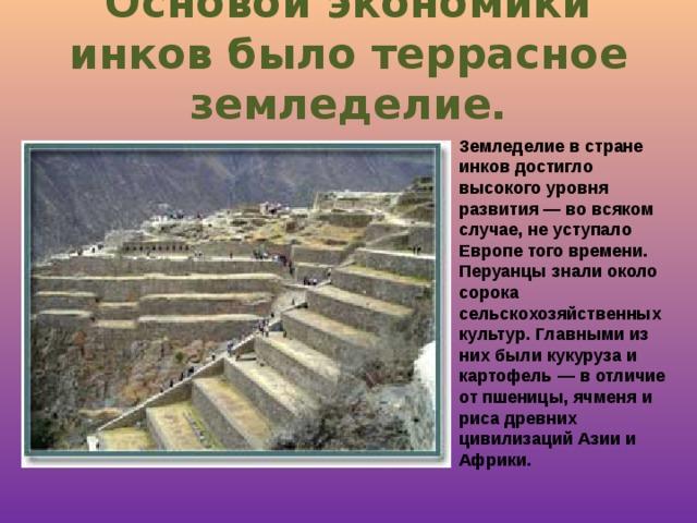 Основой экономики инков было террасное земледелие. Земледелие в стране инков достигло высокого уровня развития — во всяком случае, не уступало Европе того времени. Перуанцы знали около сорока сельскохозяйственных культур. Главными из них были кукуруза и картофель — в отличие от пшеницы, ячменя и риса древних цивилизаций Азии и Африки.