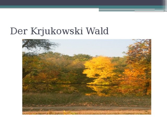Der Krjukowski Wald
