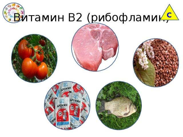 С Витамин В2 (рибофламин)