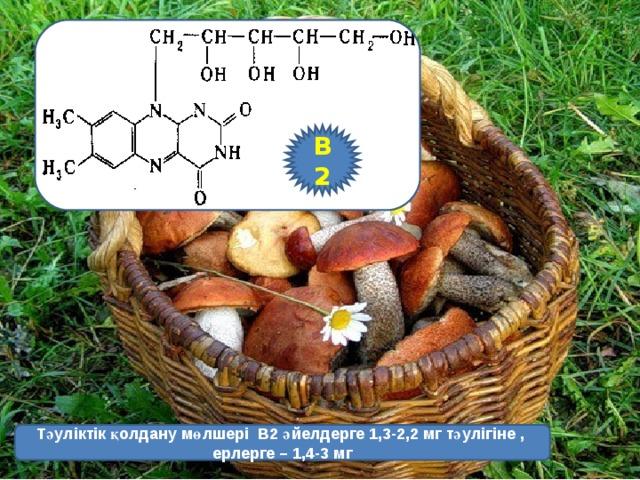 В2 Тәуліктік қолдану мөлшері  В2 әйелдерге 1,3-2,2 мг тәулігіне , ерлерге – 1,4-3 мг