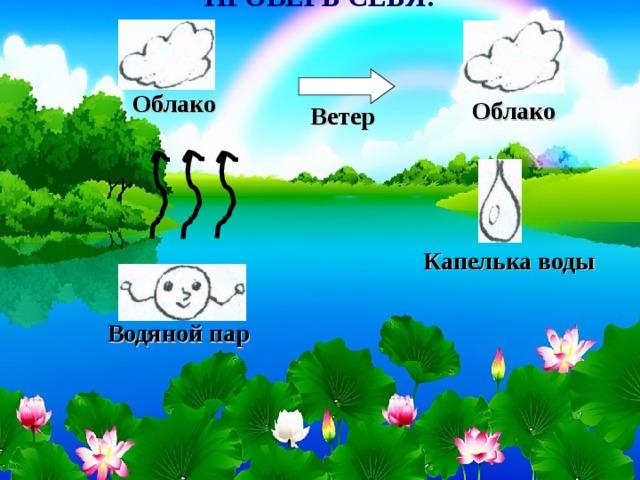 ПРОВЕРЬ СЕБЯ!             Облако Облако Ветер Капелька воды Водяной пар