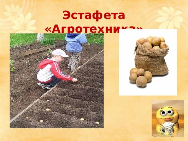 Эстафета «Агротехника»