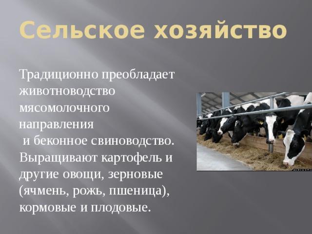 Сельское хозяйство Традиционно преобладает животноводство мясомолочного направления  и беконное свиноводство. Выращивают картофель и другие овощи, зерновые (ячмень, рожь, пшеница), кормовые и плодовые .