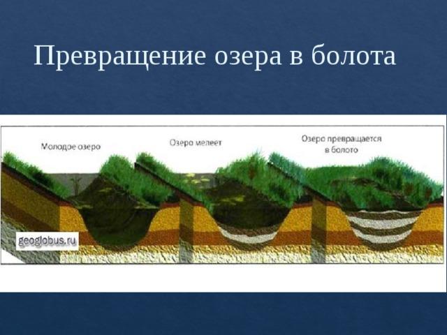 Превращение озера в болота