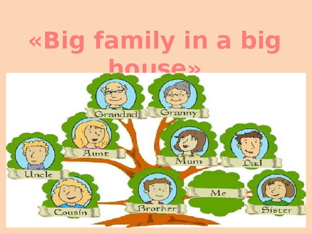 «Big family in a big house»