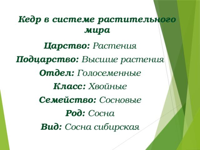 Кедр в системе растительного мира Царство: Растения Подцарство: Высшие растения Отдел: Голосеменные Класс: Хвойные Семейство: Сосновые Род: Сосна Вид: Сосна сибирская