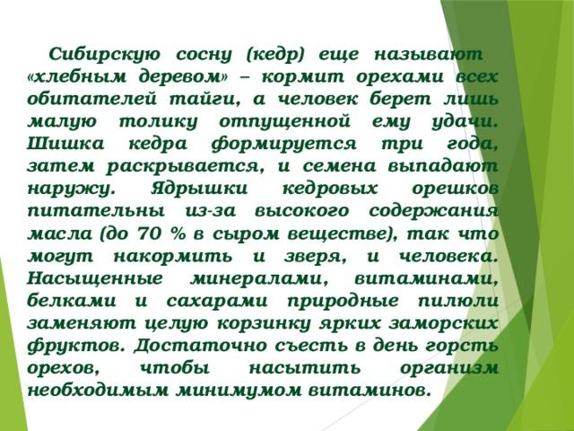 Сибирскую сосну (кедр) еще называют «хлебным деревом» – кормит орехами всех обитателей тайги, а человек берет лишь малую толику отпущенной ему удачи. Шишка кедра формируется три года, затем раскрывается, и семена выпадают наружу. Ядрышки кедровых орешков питательны из-за высокого содержания масла (до 70 % в сыром веществе), так что могут накормить и зверя, и человека. Насыщенные минералами, витаминами, белками и сахарами природные пилюли заменяют целую корзинку ярких заморских фруктов. Достаточно съесть в день горсть орехов, чтобы насытить организм необходимым минимумом витаминов.