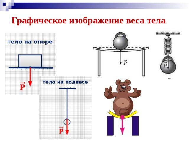 Графическое изображение веса тела