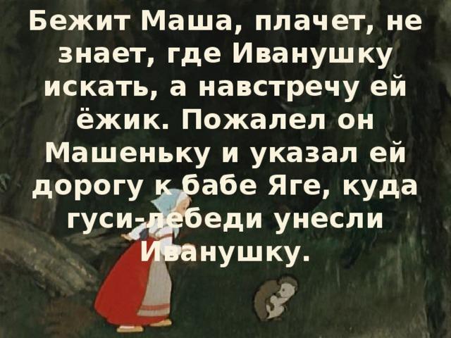 Бежит Маша, плачет, не знает, где Иванушку искать, а навстречу ей ёжик. Пожалел он Машеньку и указал ей дорогу к бабе Яге, куда гуси-лебеди унесли Иванушку.