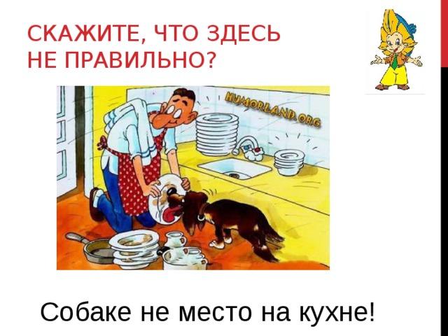 Скажите, что здесь не правильно? Собаке не место на кухне!