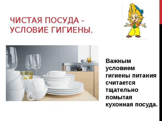 Чистая посуда - условие гигиены. Важным условием гигиены питания считается тщательно помытая кухонная посуда.