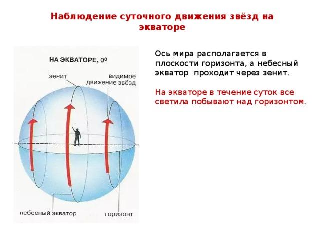Наблюдение суточного движения звёзд на экваторе Ось мира располагается в плоскости горизонта, а небесный экватор проходит через зенит. На экваторе в течение суток все светила побывают над горизонтом.