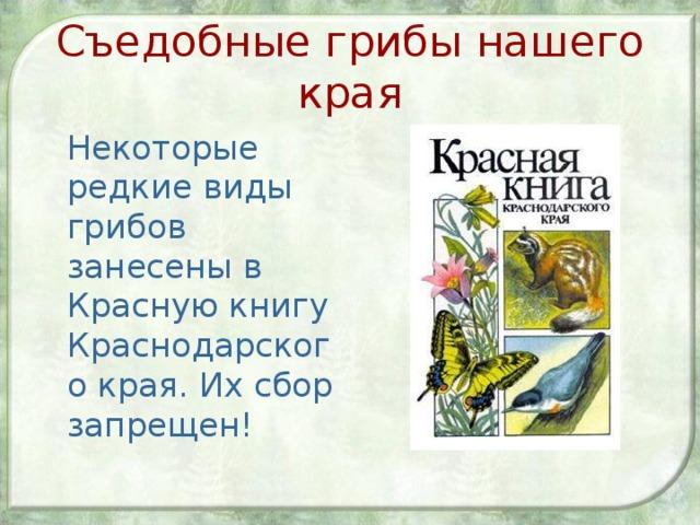 Съедобные грибы нашего края  Некоторые редкие виды грибов занесены в Красную книгу Краснодарского края. Их сбор запрещен!