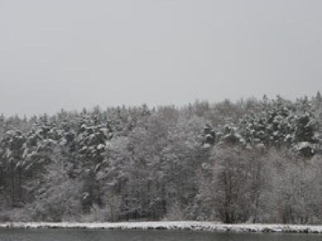 Погода становится сырой и холодной, с дождем выпадает первый снег. Погода становится сырой и холодной, с дождем выпадает первый снег.