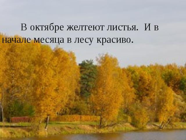 октябрь   В октябре желтеют листья. И в   начале месяца в лесу красиво. В октябре желтеют листья. И в начале месяца в лесу красиво.
