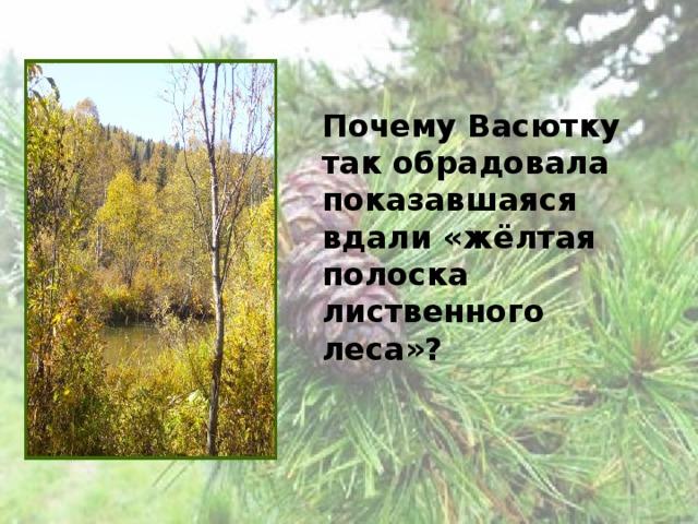 Почему Васютку так обрадовала показавшаяся вдали «жёлтая полоска лиственного леса»?