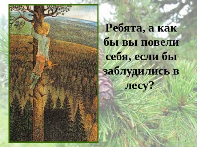 Ребята, а как бы вы повели себя, если бы заблудились в лесу?