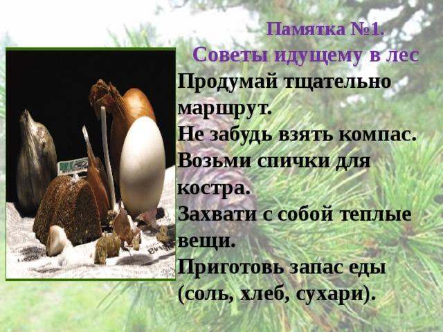 Памятка №1.   Советы идущему в лес  Продумай тщательно маршрут.  Не забудь взять компас.  Возьми спички для костра.  Захвати с собой теплые вещи.  Приготовь запас еды (соль, хлеб, сухари).