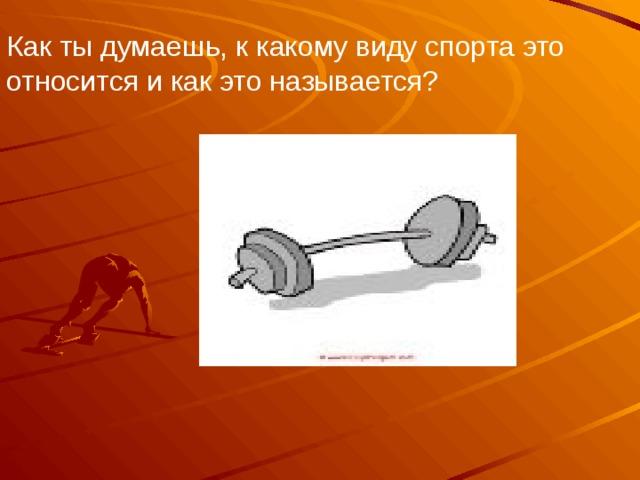 Как ты думаешь, к какому виду спорта это относится и как это называется?