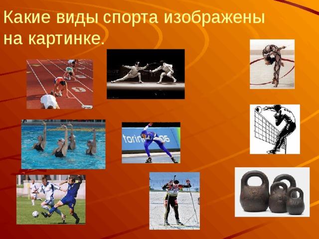 Какие виды спорта изображены на картинке.