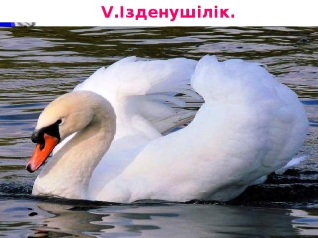 V.Ізденушілік.