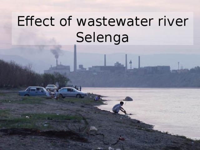 Effect of wastewater river Selenga