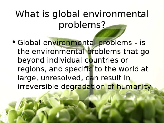 What is global environmental problems?