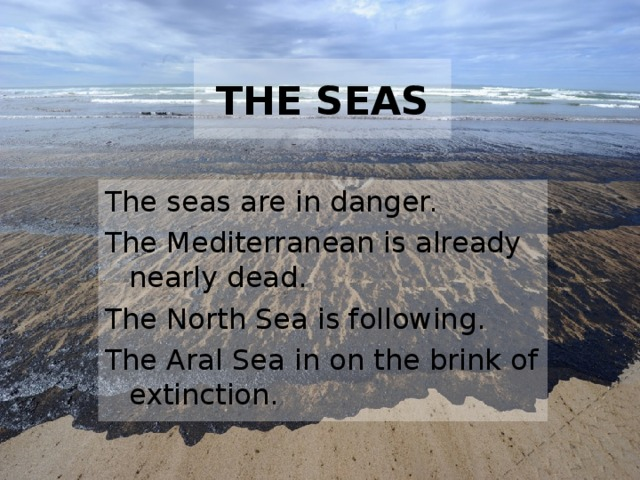 THE SEAS The seas are in danger. The Mediterranean is already nearly dead. The North Sea is following. The Aral Sea in on the brink of extinction.