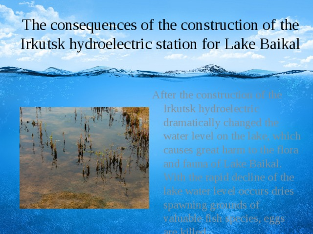 The consequences of the construction of the Irkutsk hydroelectric station for Lake Baikal After the construction of the Irkutsk hydroelectric dramatically changed the water level on the lake, which causes great harm to the flora and fauna of Lake Baikal. With the rapid decline of the lake water level occurs dries spawning grounds of valuable fish species, eggs are killed.